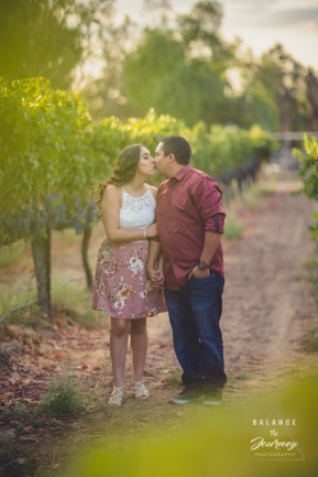 Steven + Erica Engagment 201777 September 14, 2017