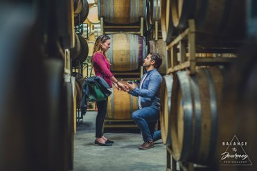 Chase + Melanie proposal 201769 November 20, 2017